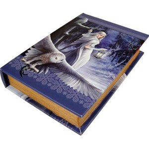 Anne Stokes Midnight Messenger Book Box