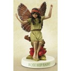 Flower Fairies The Rose Hip Fairy