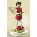 Flower Fairies Bosaardbei