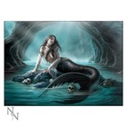 Anne Stokes Sirens Lament Glass Picture