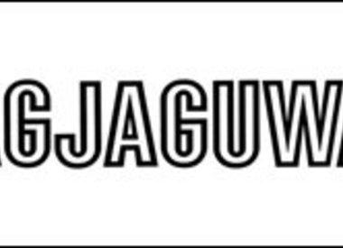 Jagjaguwar