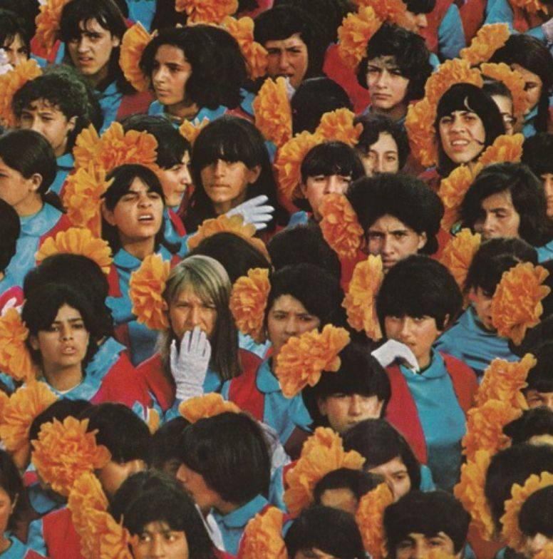 Transgressive Records Alvvays - Alvvays