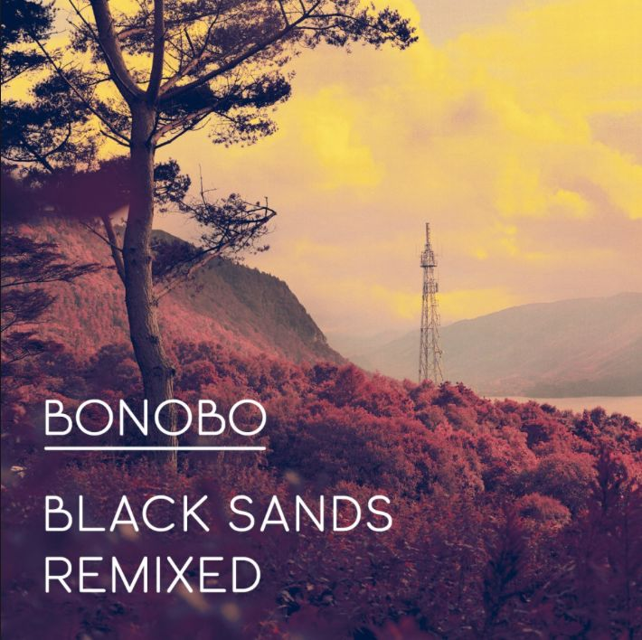 Ninja Tune Bonobo - Black Sands Remixed