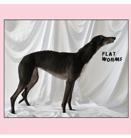 Castle Face Records Flat Worms - Flat Worms