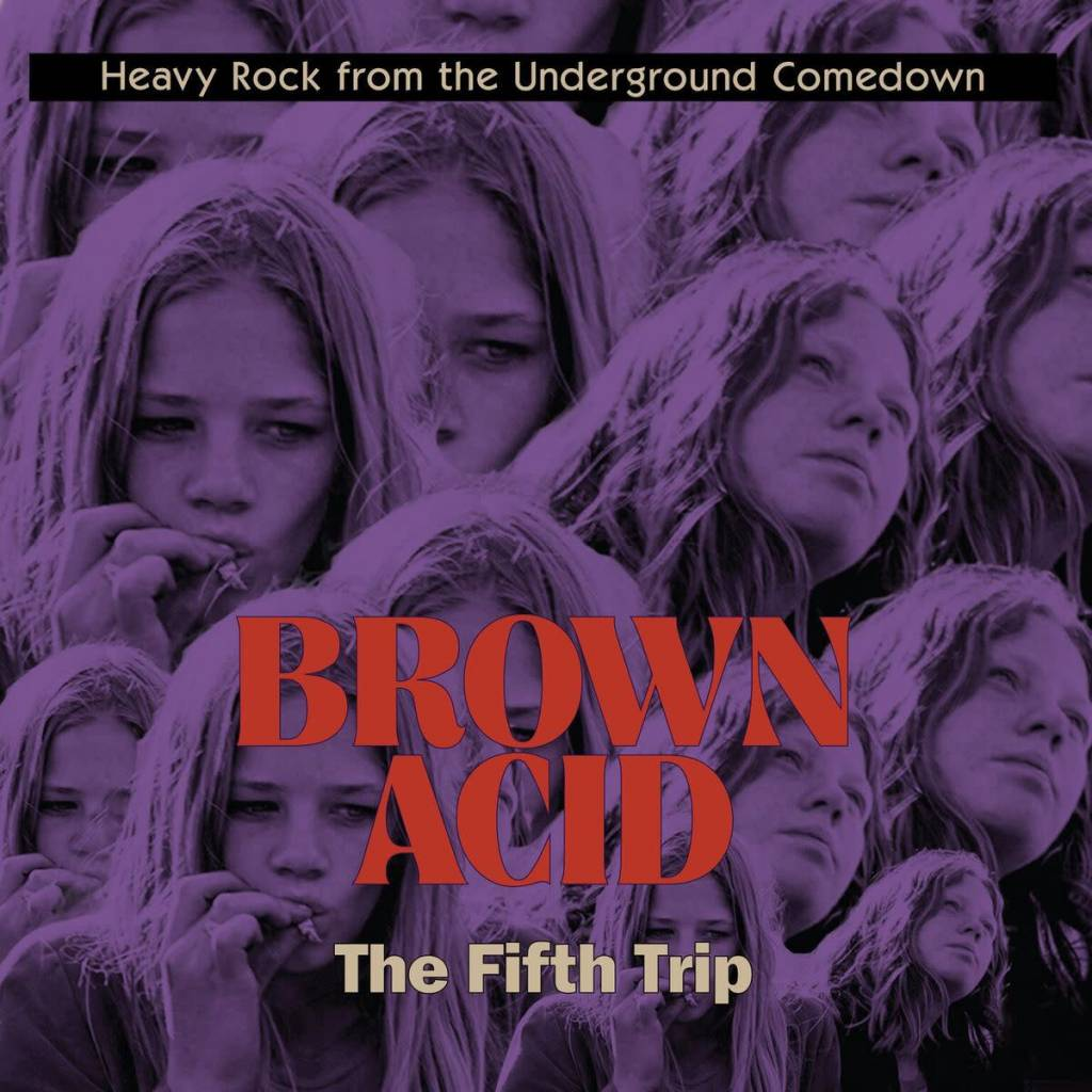 Riding Easy Records Various - Brown Acid: The Fifth Trip