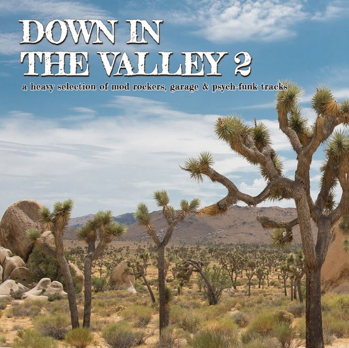 Perfect Toy Various - Down In The Valley 2