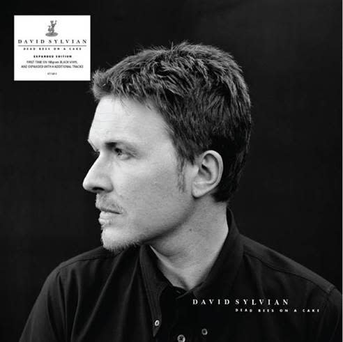 Universal Music UK David Sylvian - Dead Bees On A Cake