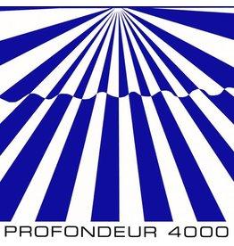Growing Bin Records Shelter - Profondeur 4000 LP