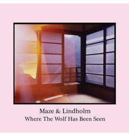 Aurora Borealis Maze & Lindholm - Where The Wolf Has Been Seen