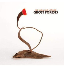 Three Lobed Meg Baird & Mary Lattimore - Ghost Forests