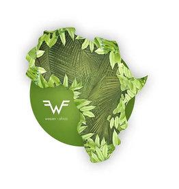 Atlantic Weezer - Africa / Rosanna