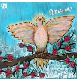 PNKSLM Chemtrails - Cuckoo Spit EP