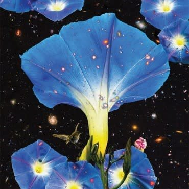 Thrill Jockey Sarah Louise - Nighttime Birds and Morning Stars (Coloured Vinyl)