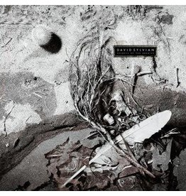 Virgin David Sylvian - Secrets Of The Beehive