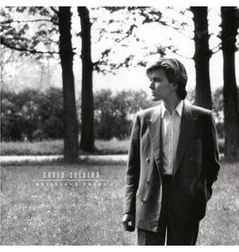 Virgin David Sylvian - Brilliant Trees
