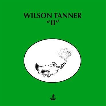 Efficient Space Wilson Tanner - II