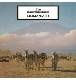 Mercury Records The Teardrop Explodes - Kilimanjaro