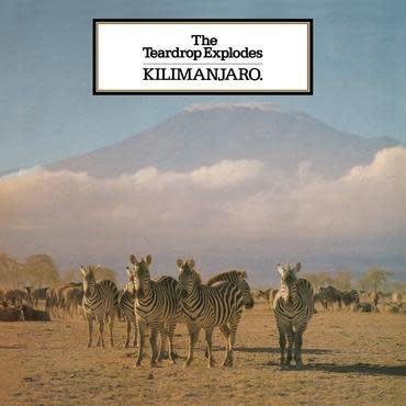Mercury Records The Teardrop Explodes - Kilimanjaro
