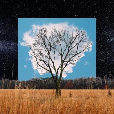 R'COUP'D Fink - Bloom Innocent (Coloured Vinyl)