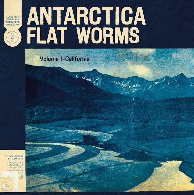 GOD Flat Worms - Antarctica