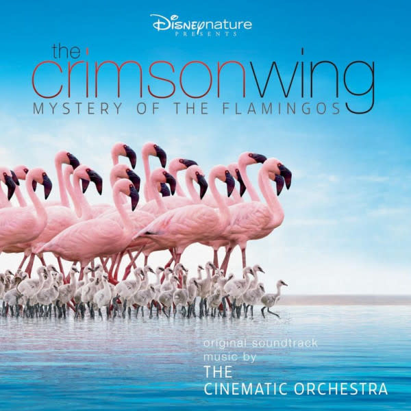 Disney Cinematic Orchestra with the London Metropolitan Orchestra - The Crimson Wing - Mystery of The Flamingoes