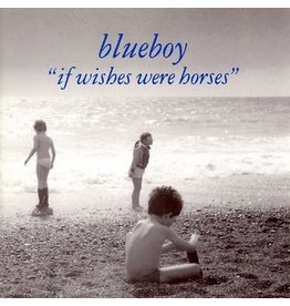 A Colourful Storm Blueboy - If Wishes Were Horses