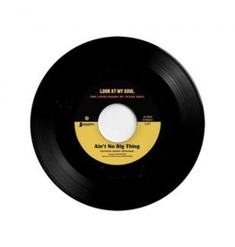 Nacional Records Johnny Hernandez/Black Pumas featuring Kam Franklin - Ain't No Big Thing b/w Look At My Soul