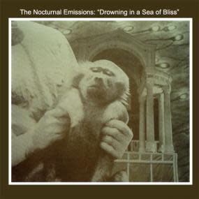 Mannequin Nocturnal Emissions - Drowning In A Sea Of Bliss