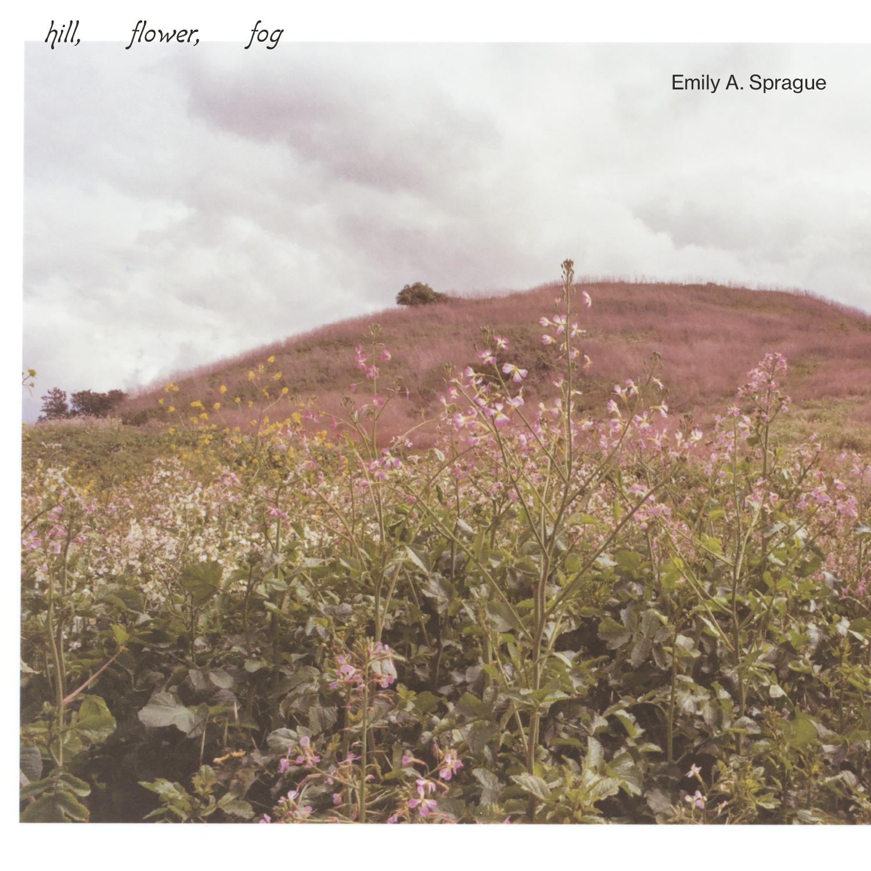 RVNG Emily A. Sprague - Hill, Flower, Fog
