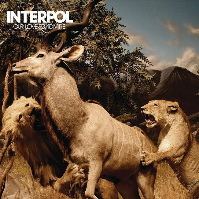 Matador Records Interpol - Our Love to Admire