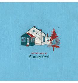 Rough Trade Records Pinegrove - Amperland, NY