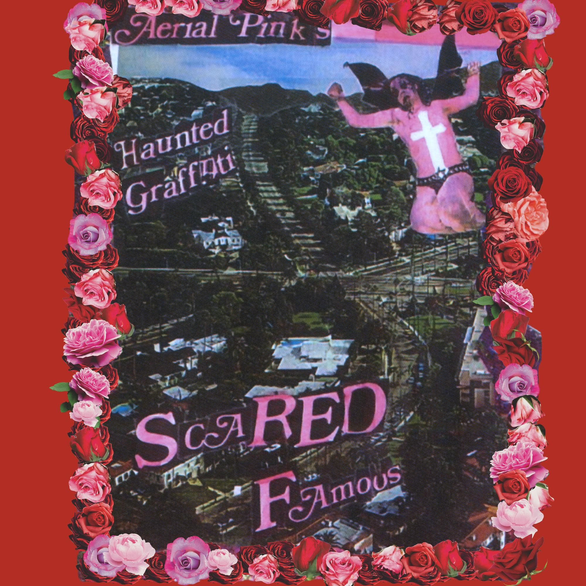 Mexican Summer Ariel Pink - Scared Famous/FF>>
