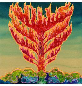 Rocket Recordings Hills - Frid (Coloured Vinyl)