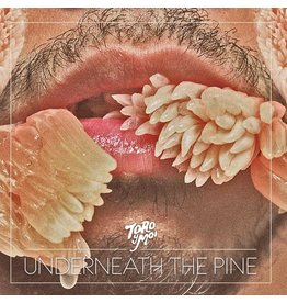 Carpark Records Toro Y Moi - Underneath The Pine' (10th Anniversary)