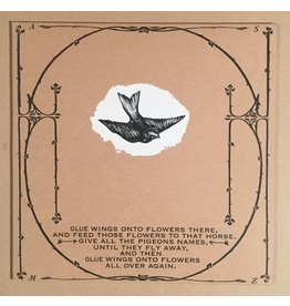 Constellation Thee Silver Mt. Zion Memorial Orchestra - Horses In The Sky