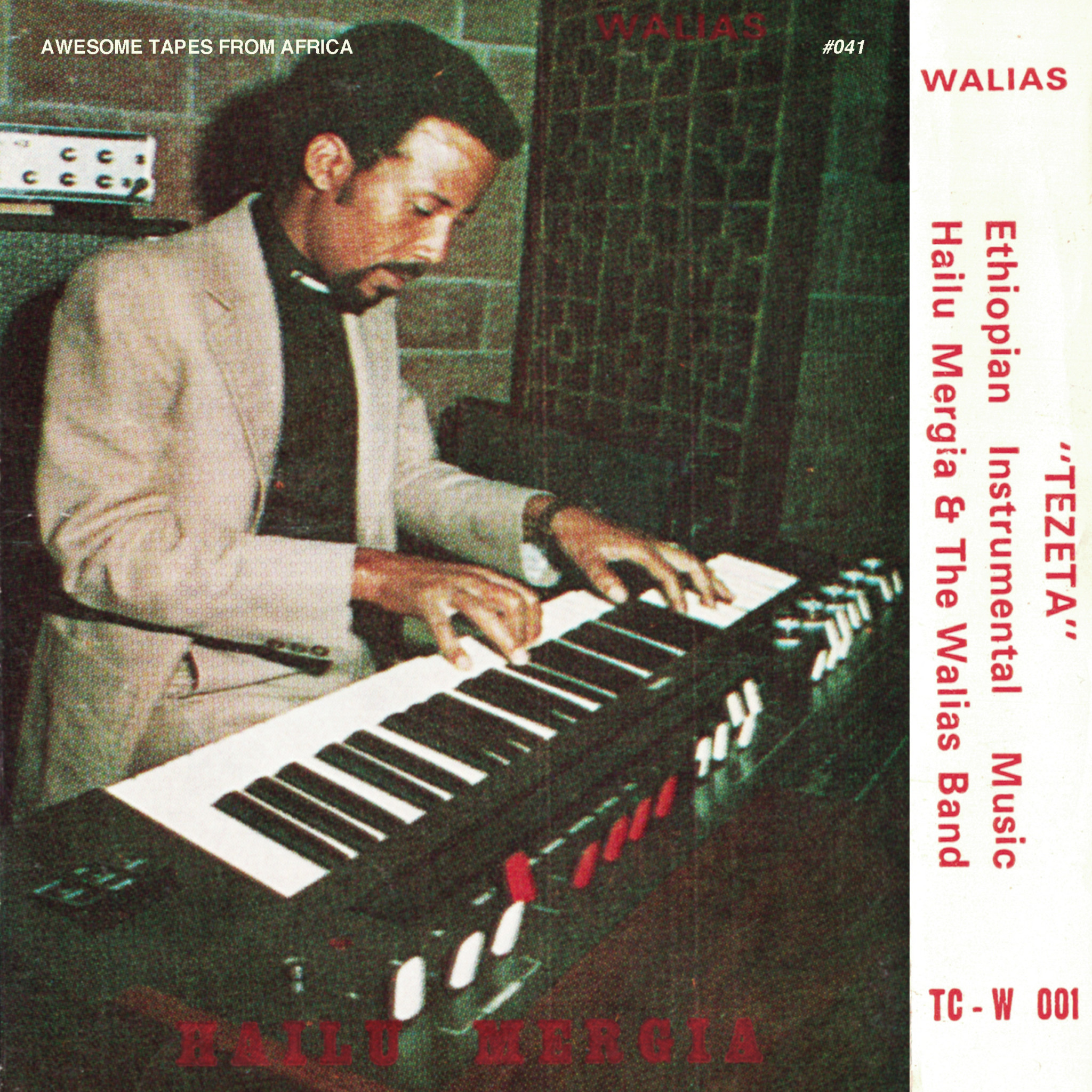 Awesome Tapes From Africa Hailu Mergia and the Walias Band – Tezeta
