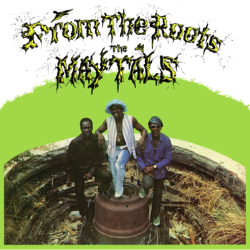 Get On Down The Maytals - From The Roots