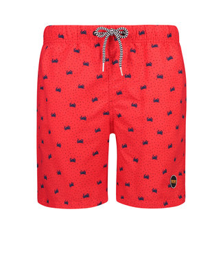 Shiwi Swim short crabby 4192111127-310