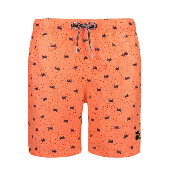 Shiwi Swim short crabby 4192111127-209