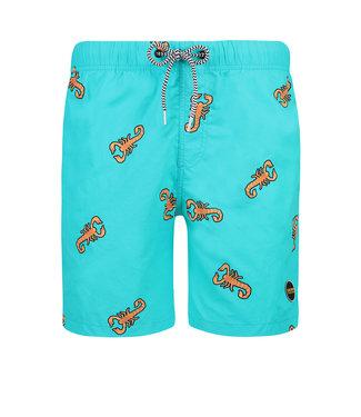 Shiwi Swim short scorpion 4192111153-667