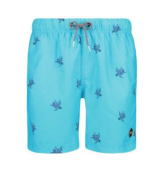 Shiwi swim short turtle 4192111147-667