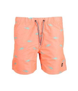 Shiwi Swim short mako 4192111161-209