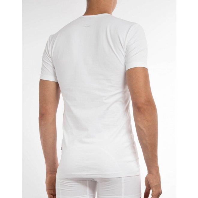 basic t-shirt CL1021