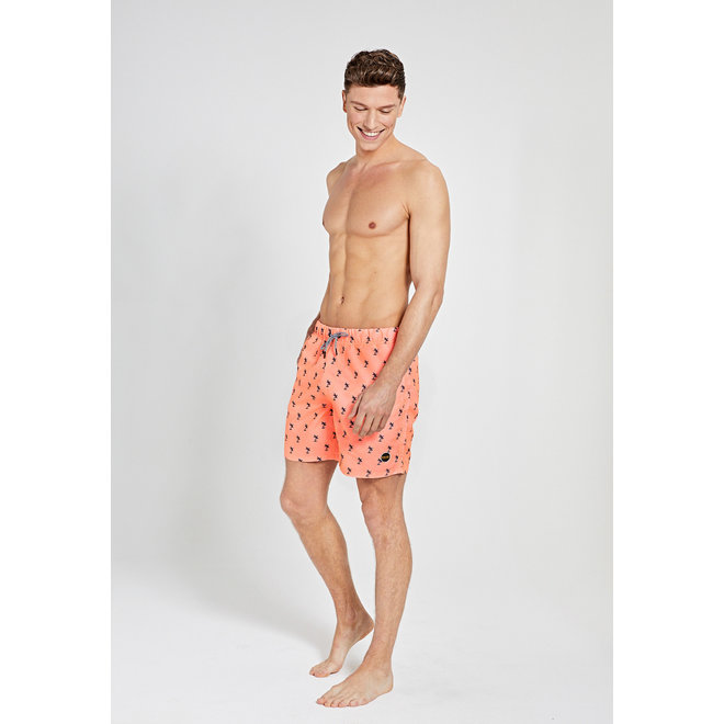 Swimshort Palm