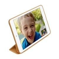 Smart Case iPad Mini /2/3 Brown