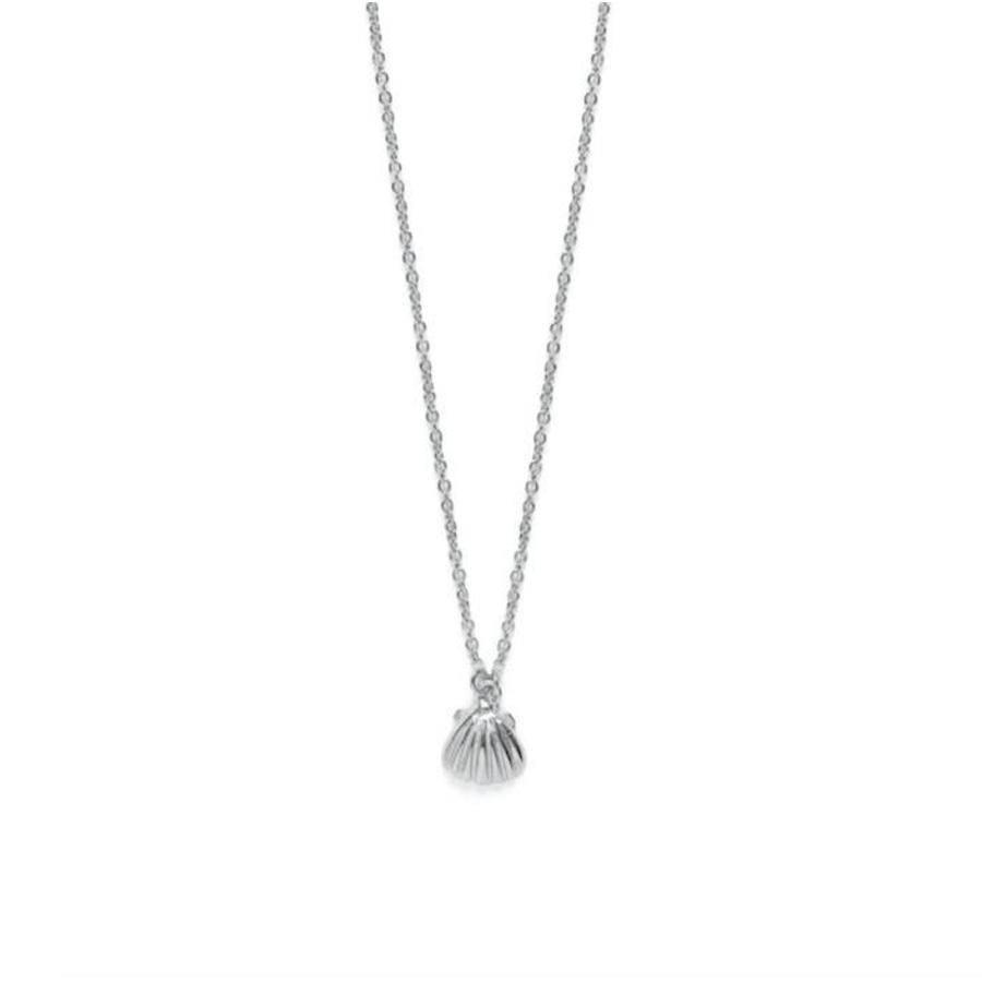 Shell Necklace Silver-1