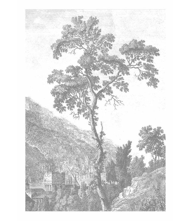 Wall Mural Engraved Landscapes, 194.8 x 280 cm