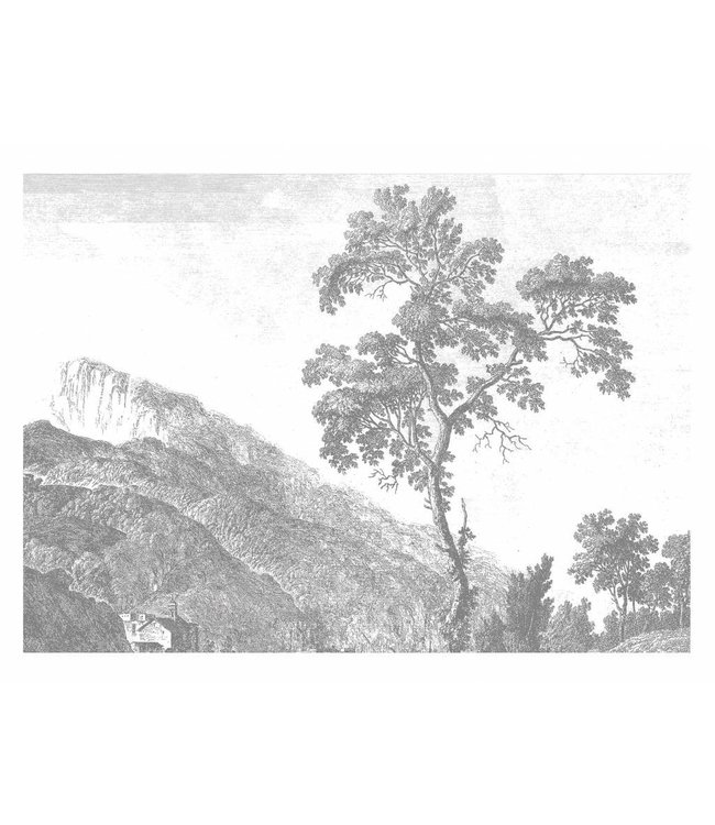 Wall Mural Engraved Landscapes, 389.6 x 280 cm