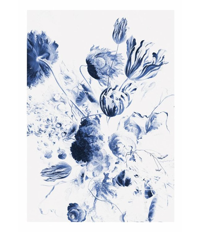 Fotobehang Royal Blue Flowers 2, 194.8 x 280 cm