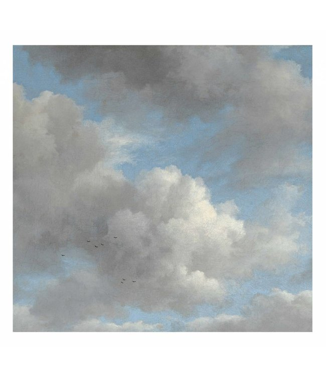 Fototapete Golden Age Clouds, 292.2 x 280 cm